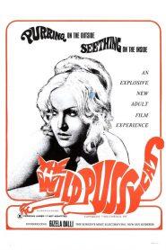 Kayti ekdikisis (1969)