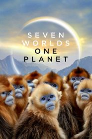 Seven Worlds, One Planet (2019) hd-ντοκιμαντερ-watch-online
