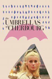 The Umbrellas of Cherbourg (1964) ταινία online με ελληνικούς υπότιτλους