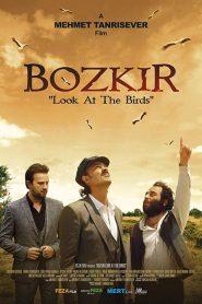 "Bozkir ""Look at the Birds"" (2019) – watch Online – Greek Subs"