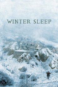 Winter Sleep – Kis Uykusu (2014) – Greek Subs