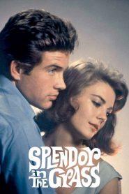 Splendor in the Grass (1961) – ELLINIKOI YPOTITLOI